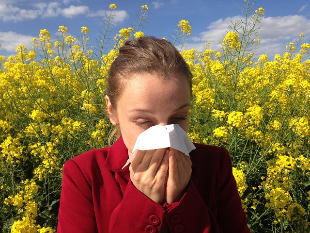 Chlp sem, chlp tam : máte stále upchatý nos?