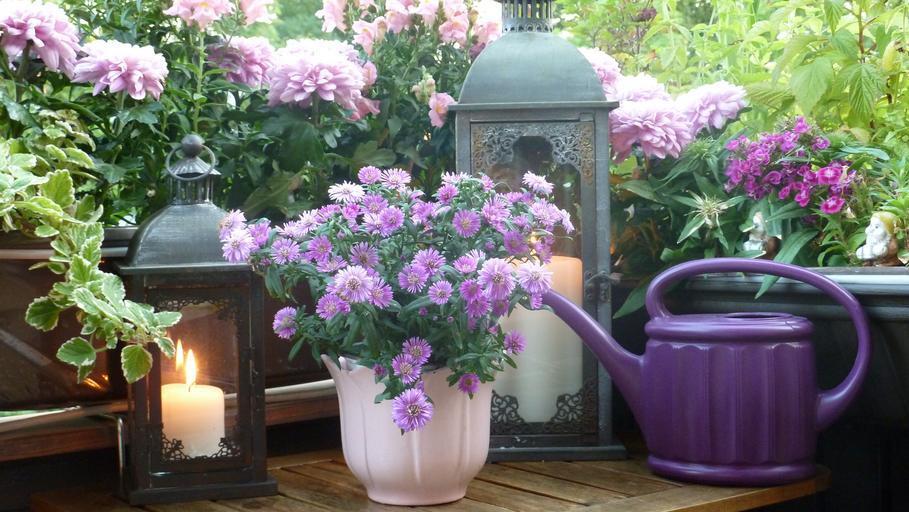 kvety na balkóne.jpg